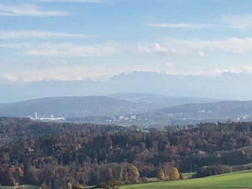Blick von Regensberg