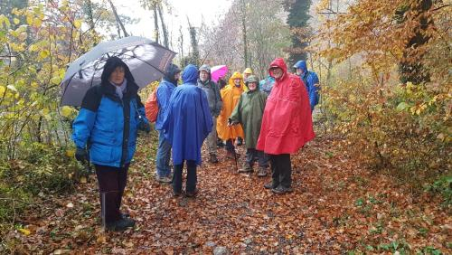 Start in Bülach im Regen